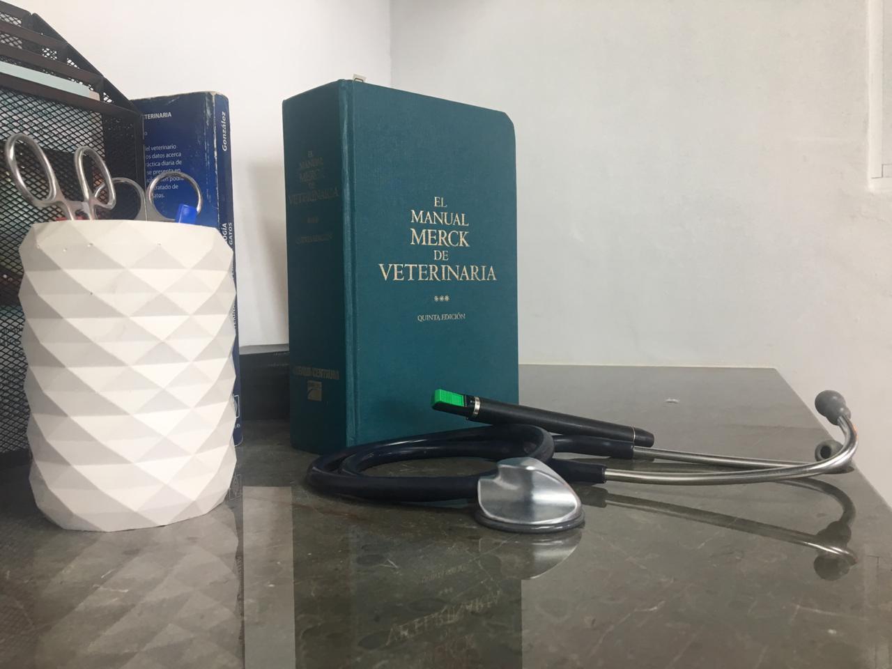medicina int
